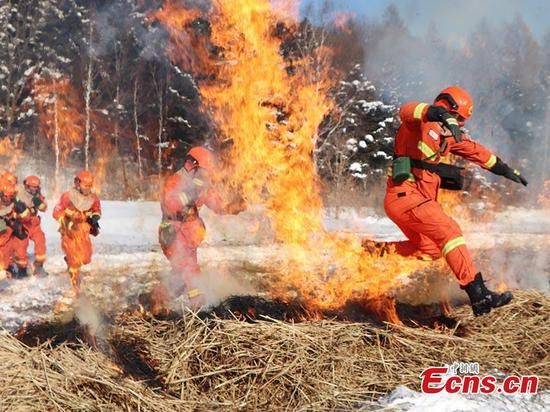 Forest team tackles fire drill in NE China