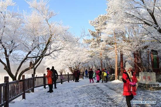 Scenery of rime-covered trees in Mudanjiang, China's Heilongjiang